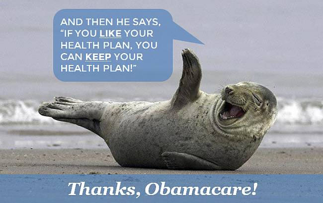 Seal Health Plan