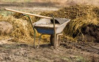 Government Farming Subsidies Are A Pile Of Poo